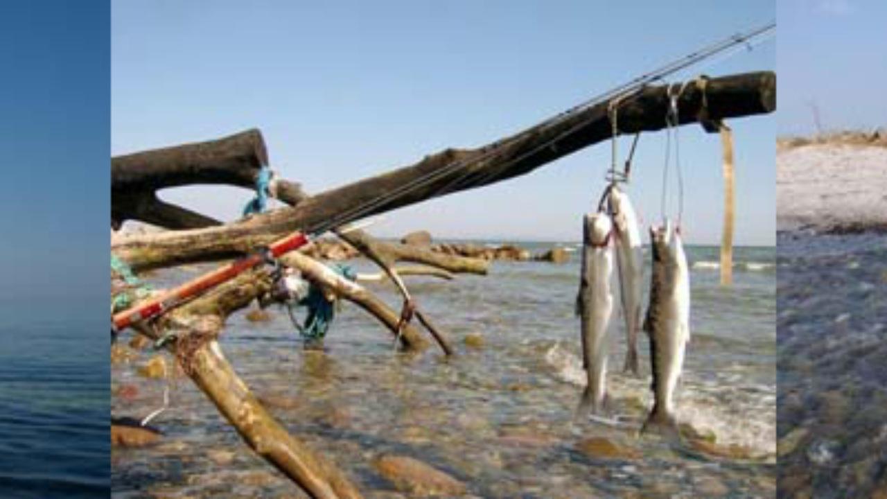Møns Sportsfiskerforening